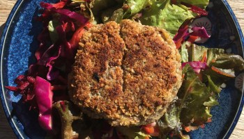 WEEKLY RECIPE- Hemp Hummus Burgers