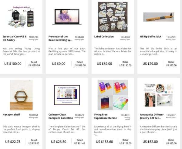 online auction virtual event examples | Virtual Events Guide: Ultimate Playbook for Small Biz Owners