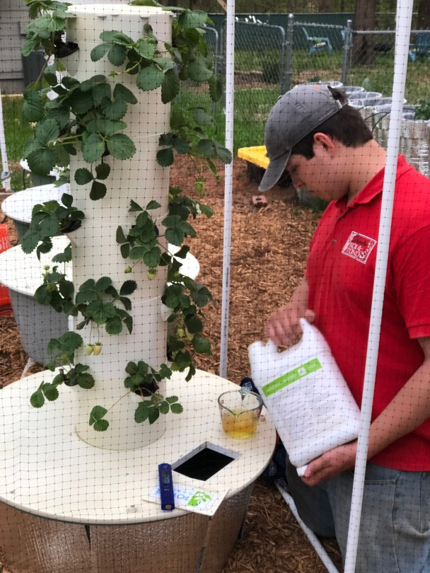 Adding nutrients to reservoir of Tower Garden Hydroponic System