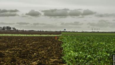 Photo de EuropaCity : un tas de fumier vaut mieux qu'un projet de merde