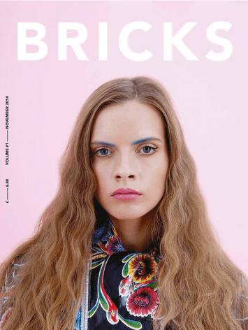 brick-vol-1