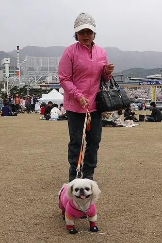 korean hikers and hiking fashion