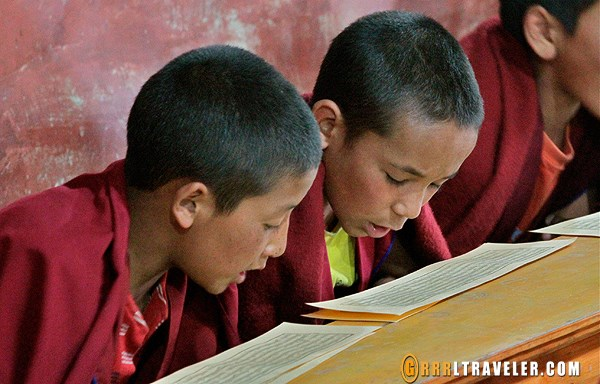 thikse-baby-monks
