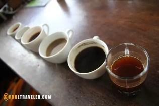 bali coffee, kopi luwak