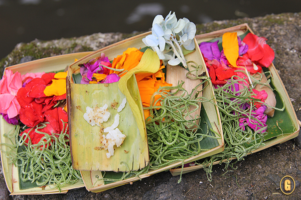 Prayer offerings in Ubud