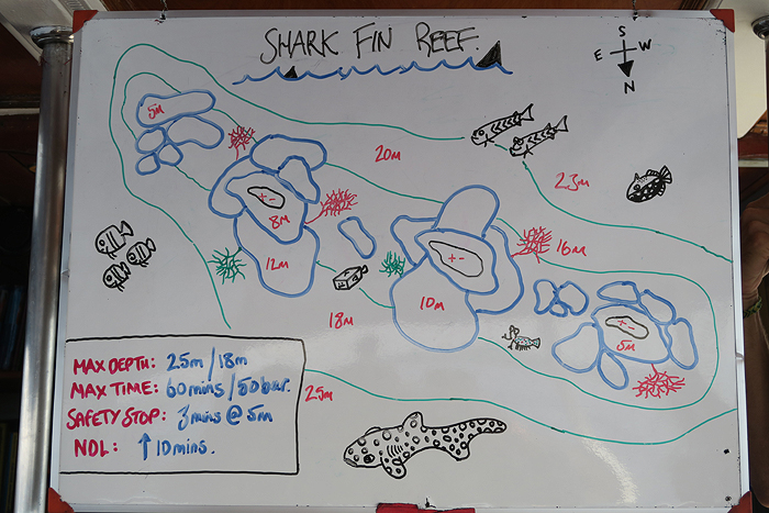 dive briefing, sharks fin, similan islands, wicked diving liveaboard boat, wicked diving boat, what is a liveaboard, wicked diving khao lak, wicked diving similan islands, wicked diving flores