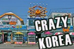 travel korea, crazy korea,