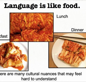 dealing with language barriers living abroad