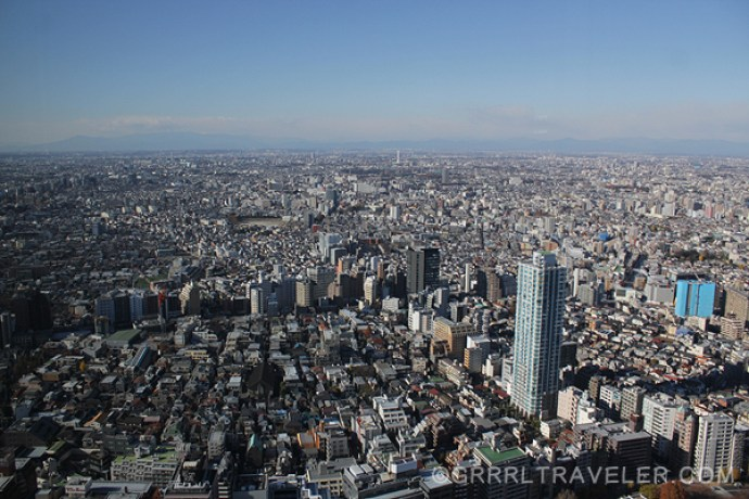 A view Tokyo from the Tokyo Metropolitan Government Building
