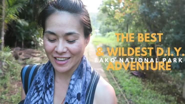 My Bako National Park Wildlife Adventure, Bako National Park Wildlife kuching