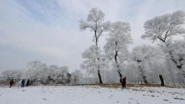 woosong island, rimes jilin, jilin winter wonderland, jilin festival