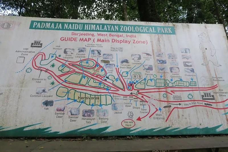 darjeeling zoological park, darjeeling zoo