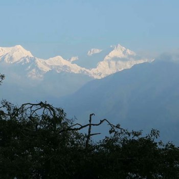 How to Reach Pelling: Momos in Sikkim