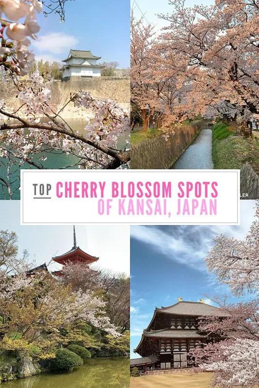 best cherry blossom spots of kyoto osaka nara, kansai travel guide