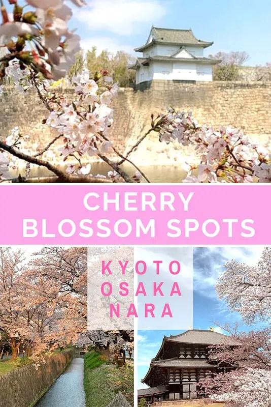 best cherry blossom spots of kyoto osaka, kansai travel guide