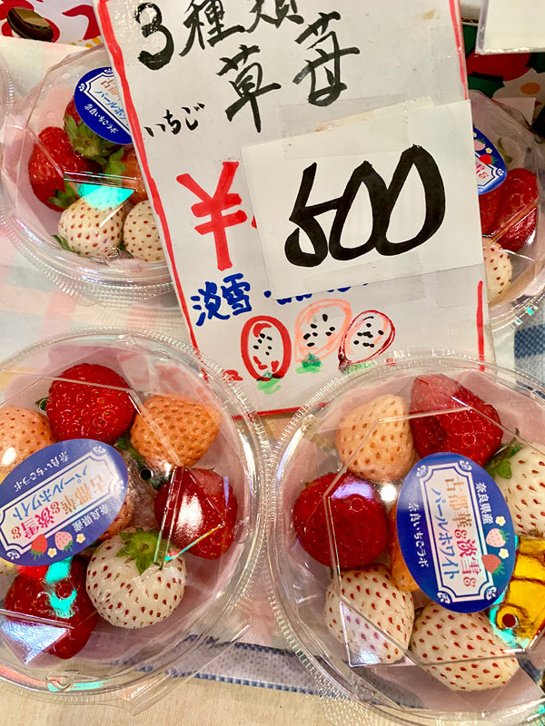 10 must try sakura snacks