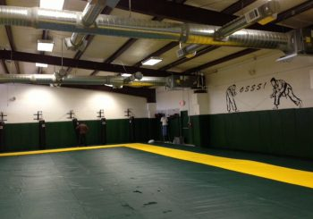 Jiu Jitsu Dojo in Dallas Janitorial Cleaning Service 07 2aaac06e31451c7d10a3dae220d8a8a7 350x245 100 crop Jiu Jitsu Dojo in Dallas   Janitorial Cleaning Service