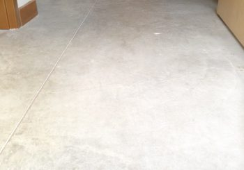 Office Concrete Floors Cleaning Stripping Sealing Waxing in Dallas TX 12 cc08ea4b883ed07f8f15dd25167dcc71 350x245 100 crop Office Concrete Floors Cleaning, Stripping, Sealing & Waxing in Dallas, TX