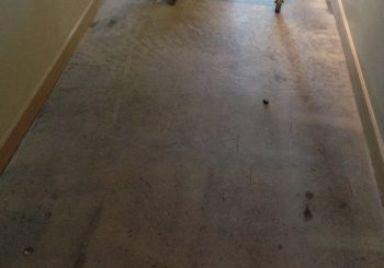 Office Concrete Floors Cleaning Stripping Sealing Waxing in Dallas TX 29 08fea6746596441c76fa133a42d63030 350x245 100 crop Office Concrete Floors Cleaning, Stripping, Sealing & Waxing in Dallas, TX