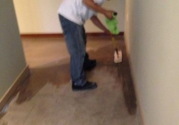 Office Concrete Floors Cleaning Stripping Sealing Waxing in Dallas TX 33 33d14ee68dc39287d9877a892b9aceb3 350x245 100 crop Office Concrete Floors Cleaning, Stripping, Sealing & Waxing in Dallas, TX