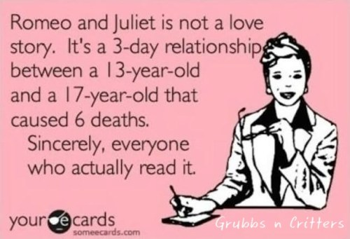 romeo-and-juliet-not-a-love-story
