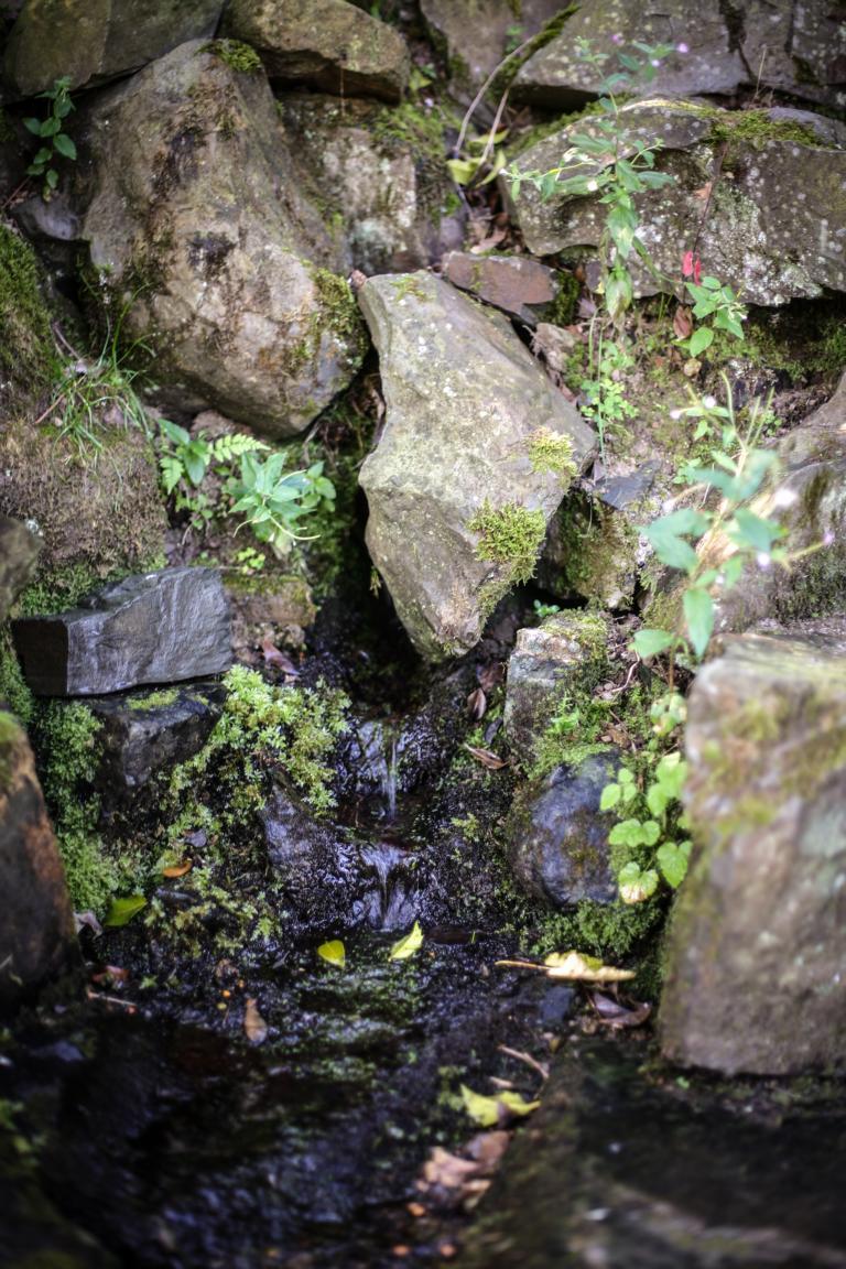 Volmequelle. Das Quellwasser rinnt aus dem Berg. © Foto: Stefanie Schildchen