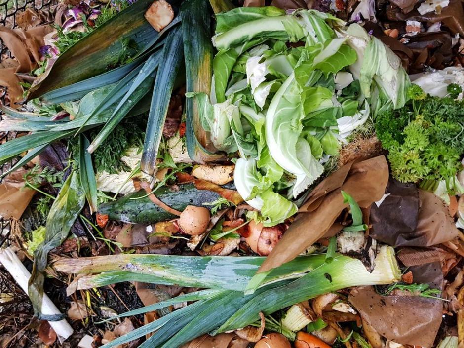 Kompost © Foto: Stefanie Schildchen