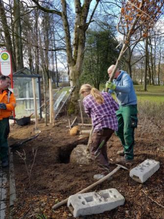 Baumpflanzug im Volkspark, Meinerzhagen. © 2019 Foto: Stefanie Schildchen