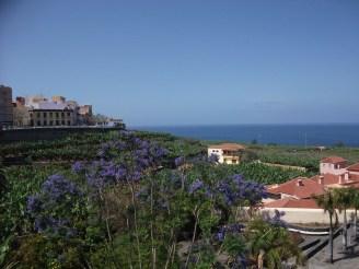 La Palma Urlaub 2015 109