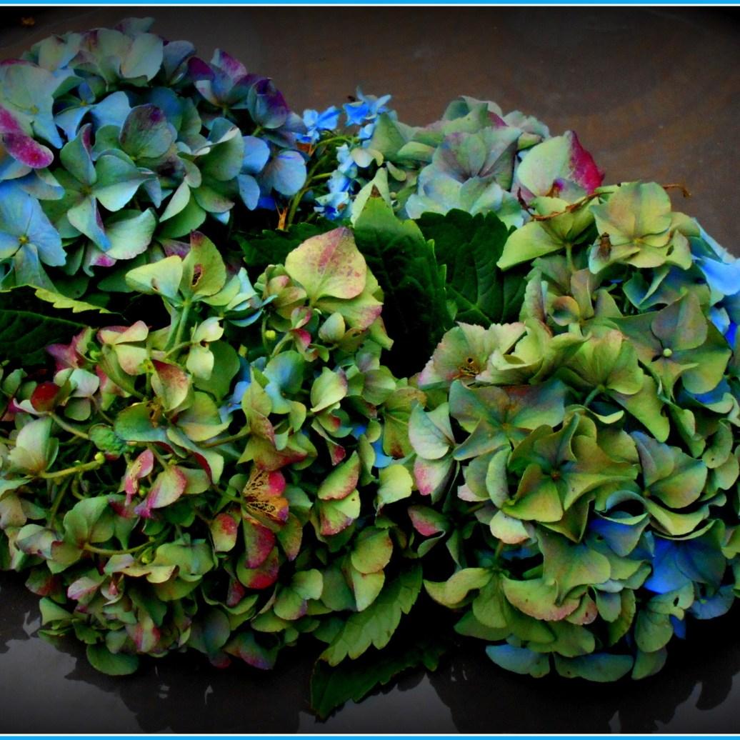 Hortensienschmuck im Rahmen