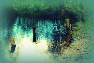 Pfähle im Wasser