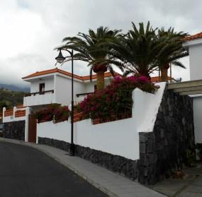 Palmen mit Haus - Kopie