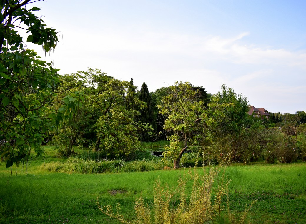 Ausblick Botanischer Garten