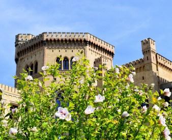 Schloßturm hinter Blüten