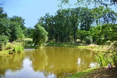 kleiner See im Park
