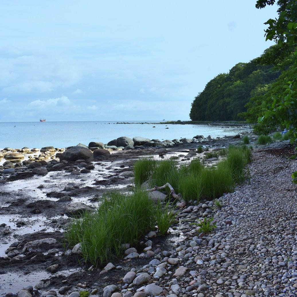 zwischen Strand und Wald