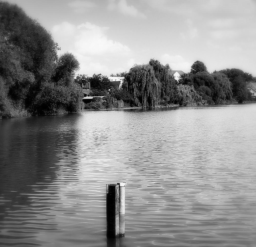 Blick über den See sw