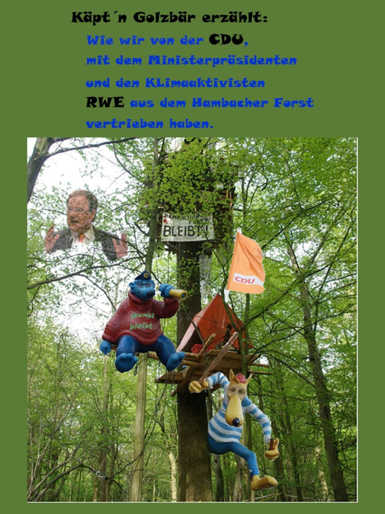 CDU Klimaschutz Grüne Nideggen Hambacher Forst Armin Laschet