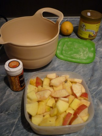 Die Apfelstücke tiefkühlen. Nach ein bis zwei Stunden in eine Schüssel geben.