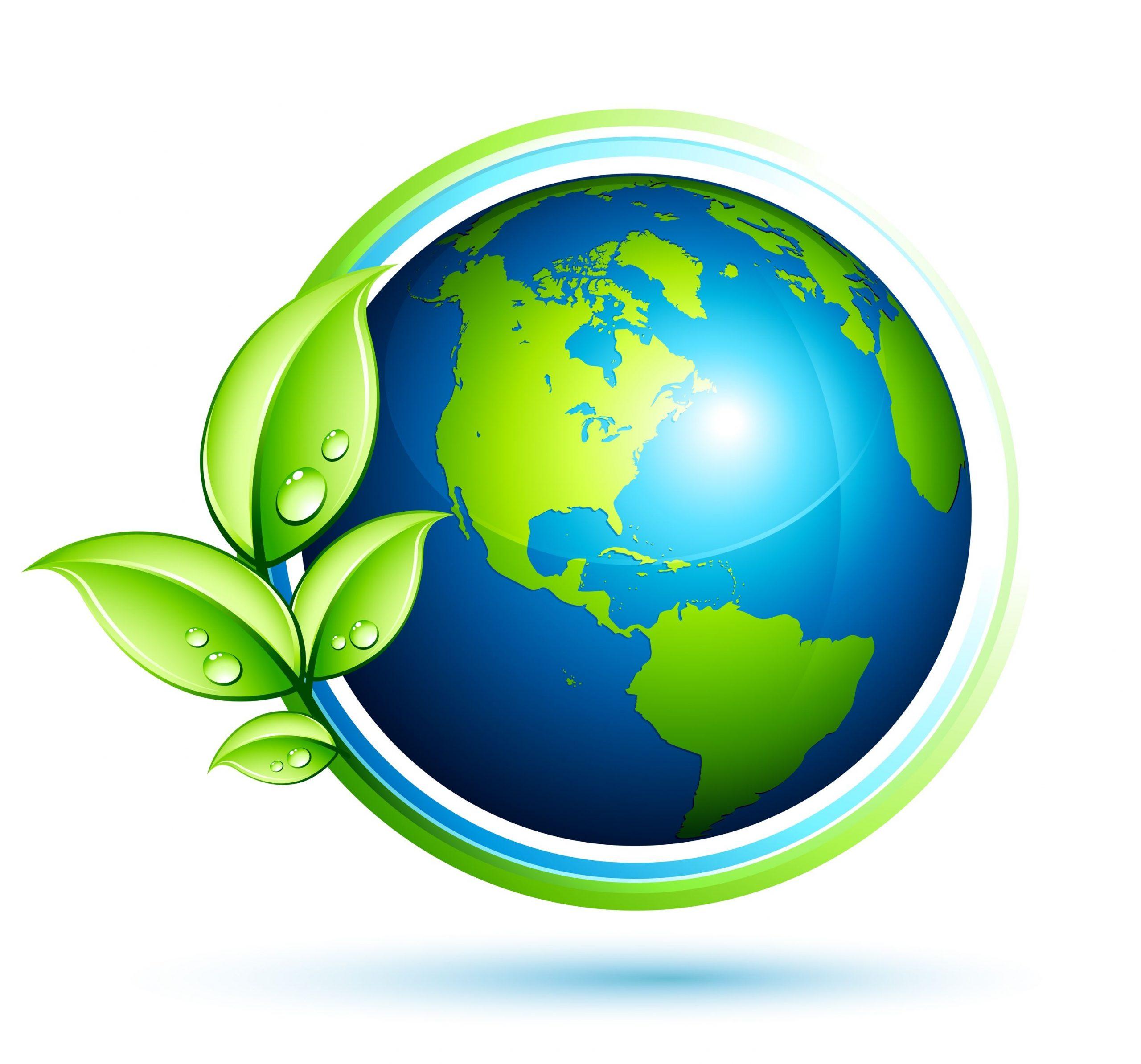 medio ambiente89