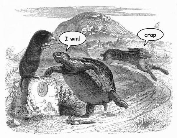 hare-tortoise