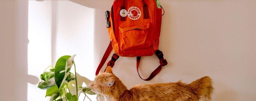 Sac à dos orange Kanken