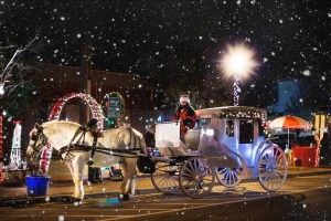 Take a ride in a horse-driven carriage
