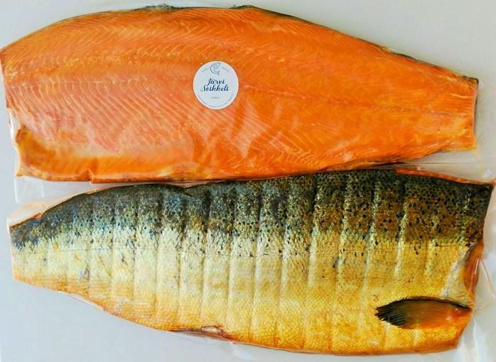 jarvi_salmon2