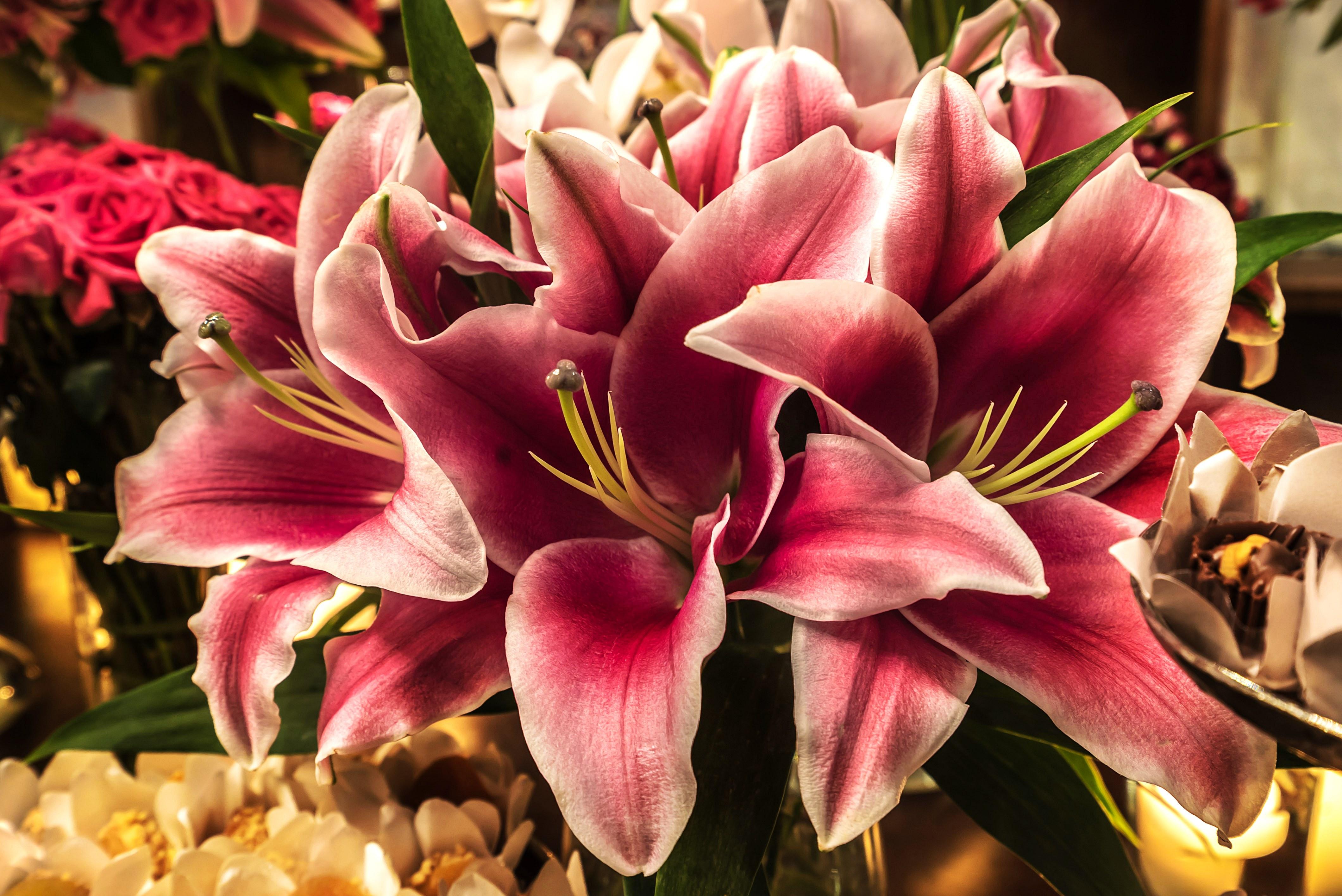 As flores certas para seu evento