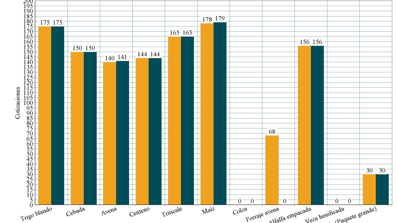 https://i0.wp.com/grupoct.com/wp-content/uploads/2020/08/20200803023117_hd.png?resize=1280%2C720&ssl=1