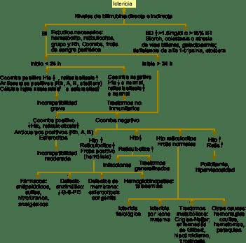 hiperbillirubinemia-en-neonatos