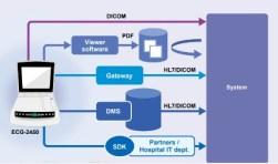 ECG comunicación en red