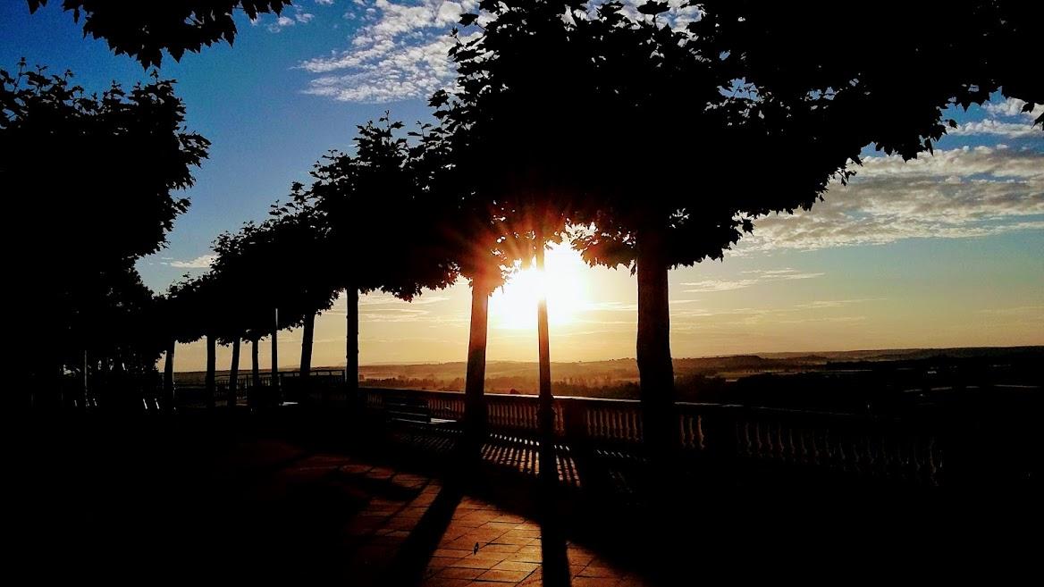 Puesta de sol entre unos arboles, fotografía de Henar Tejero