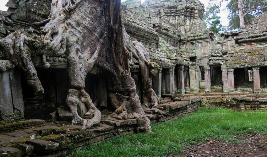 Templo de Camboya (https://pixabay.com/es/photos/camboya-angkor-templo-la-historia-603401/) https://pixabay.com/es/users/kolibri5-240538/